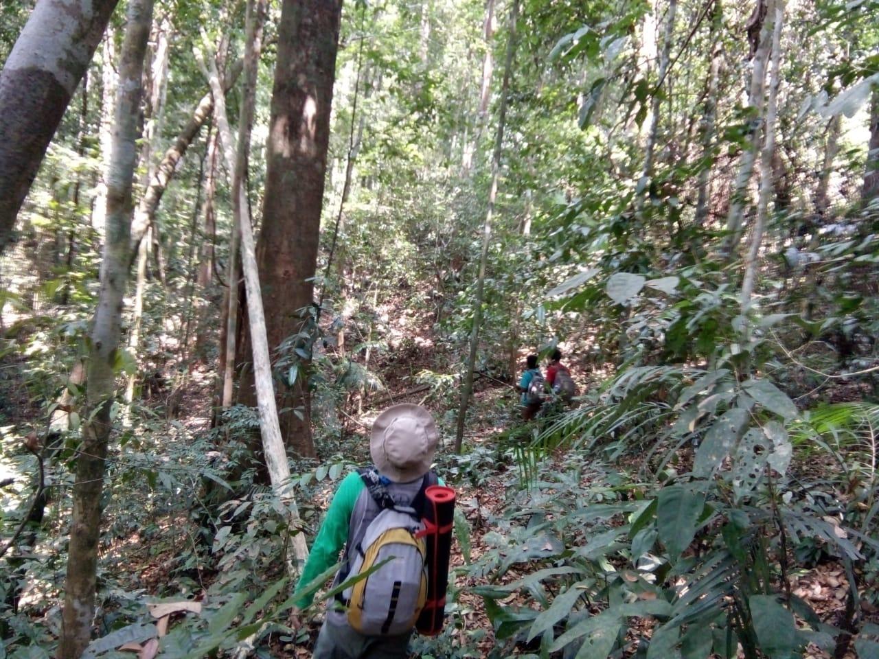 Zonasi Taman Nasional 71
